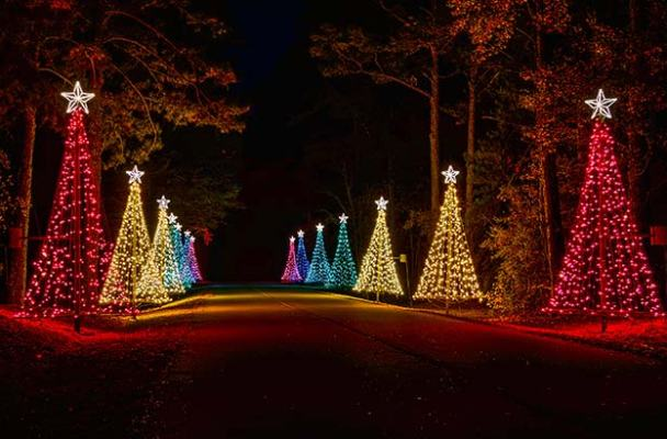 Be on the lookout for massive christmas lights kherald in atlanta for Callaway gardens fantasy in lights